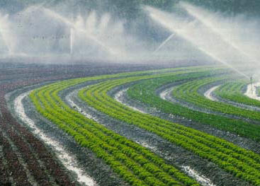 """En Inde, le spectre de """"guerres de l'eau"""" se profile"""